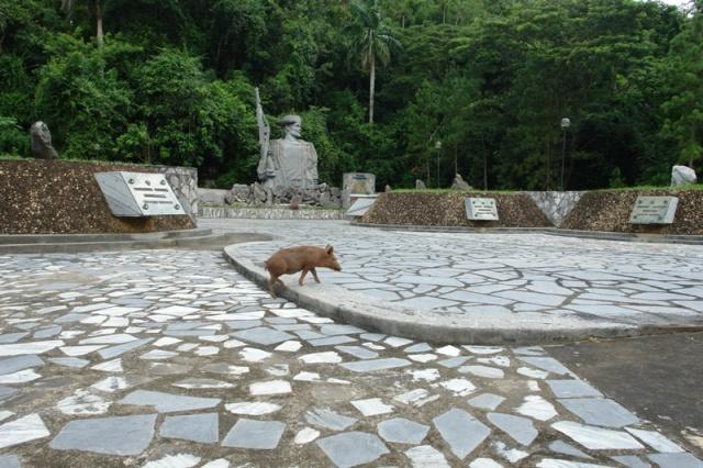 El monumento de los Malagones visitado por un cerdito