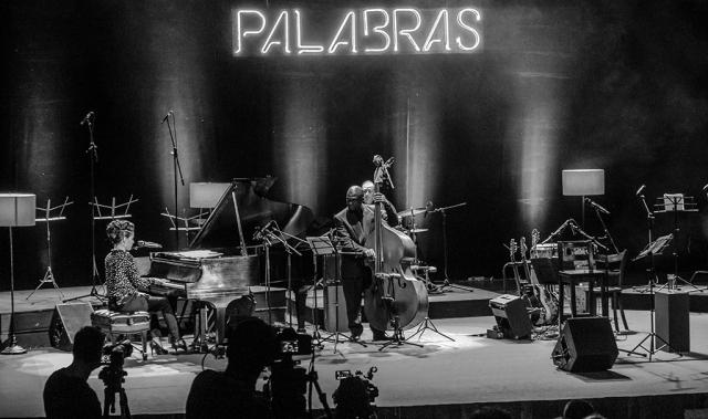 concierto de haydée Milanés (3)
