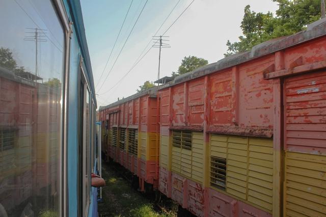 tren-habana-guanajay (3)